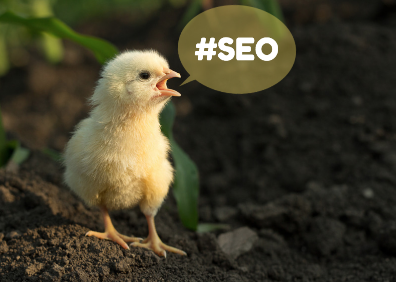 50 Tweetable Tips for Understanding SEO