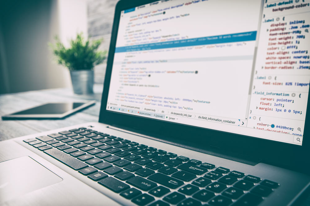 42 Web Development Terms Everyone Should Know